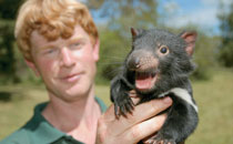 Get up close and personal with Tasmanian wildlife