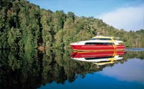 Experience the serenity of the Gordon River with World Heritage Cruises