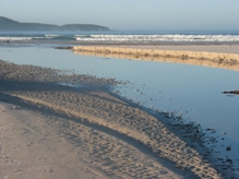 South coast track in the World Heritage Area © Chris Rees