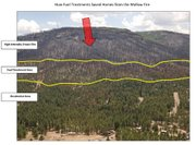 A sometimes controversial thinning project saved Alpine from the Wallow Fire. This image shows how firefighters used the strip of thinned trees to stop the rush of a crown fire.