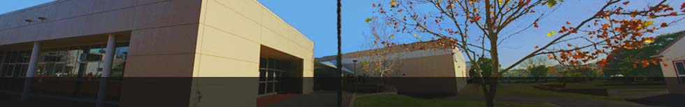 Computing and Information Systems, Newnham Campus