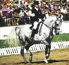 A gray horse performing in a dirt ring, ridden by a woman in a dark top hat, coat and boots and white pants. In the background a white fence, small grassy area and a seated crowd are visible.