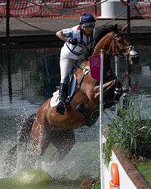 A dark brown horse with a rider on its back in mid-air, jumping out of the water to land on a grassy bank.