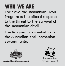 Who we are. The Save the Tasmanian Devil Program is the official response to the threat to the survival of the Tasmanian devil. The Program is an initiative of the Australian and Tasmanian governments in partnership with the University of Tasmania.