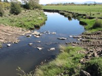 Helping rivers on road to recovery
